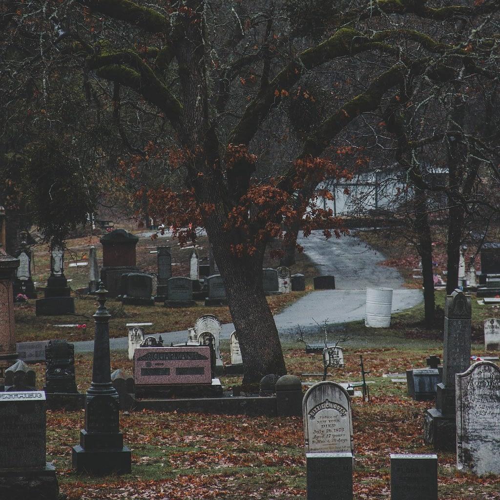 Dark cemetery with trees and gravestones