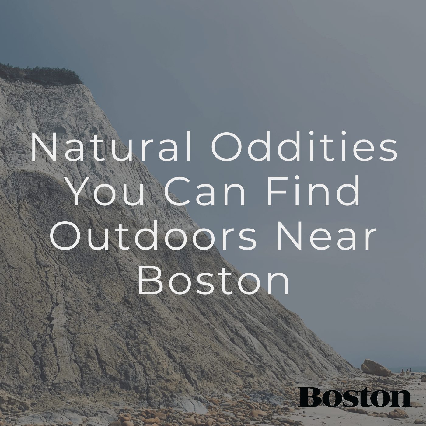 Natural Oddities You Can Find Outdoors near Boston