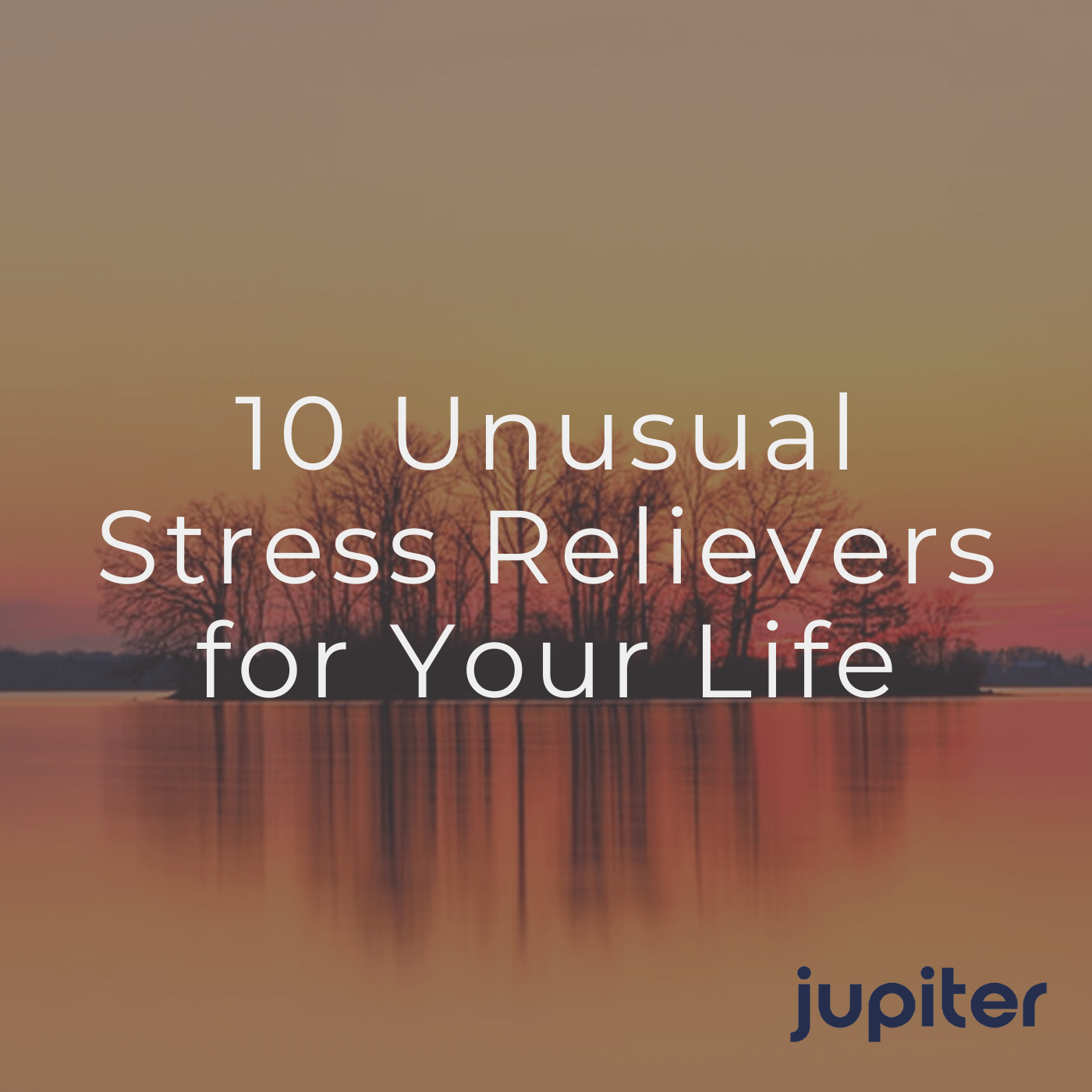 10 Unusual Stress Relievers for Your Life