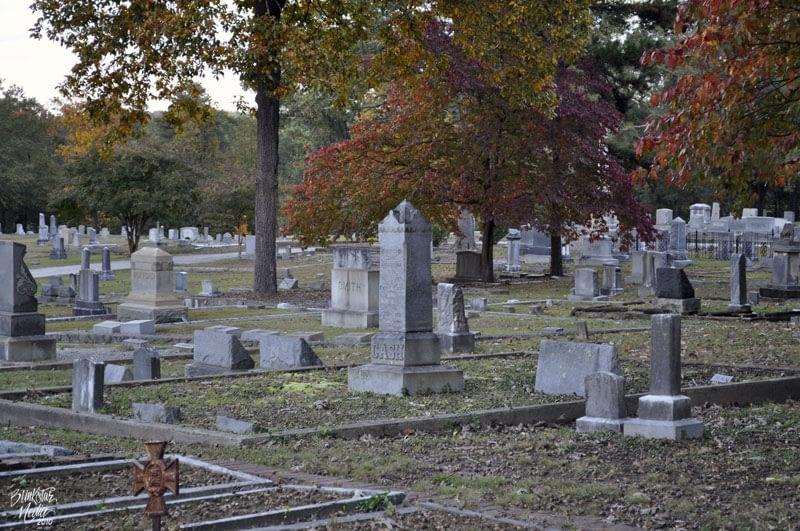 Gravestones and trees